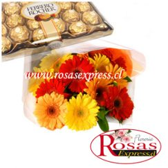 1508 Bouquet 12 Gerberas + Bombones Carezza 210gr