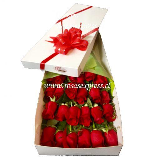 1510 Caja con 24 Rosas Importadas Producto RosasExpress.cl Florerias de Chile
