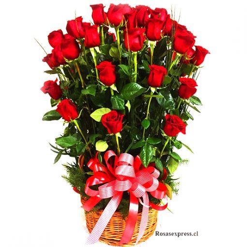 Canasto 25 Rosas Floreria en Santiago