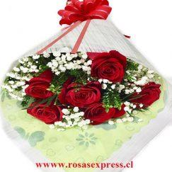Bouquet de 06 rosas importadas