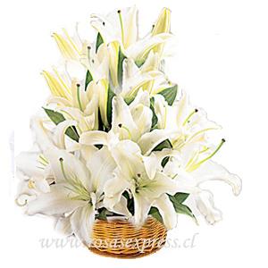 1569 Canasto Arrimo de Liliums y flores Variadas