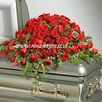 Manto fúnebre de Lux de 50 Rosas