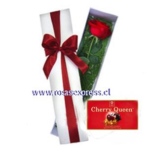 1587 Caja de 01 rosas importadas finamente presentada acompañada de finos follaje de complemento + bombones Cherry