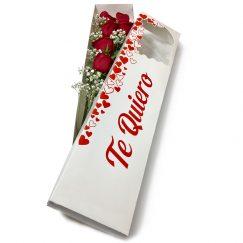 1912 Caja Romántica 12 Rosas