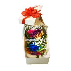 Caja de 02 rosas Arcoiris