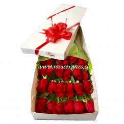 921 Caja 18 rosas importadas finamente presentadas decoradas con finos follajes y adornos de complemento gipsophilia.